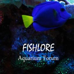 Fishlore Aquarium Fish Forum