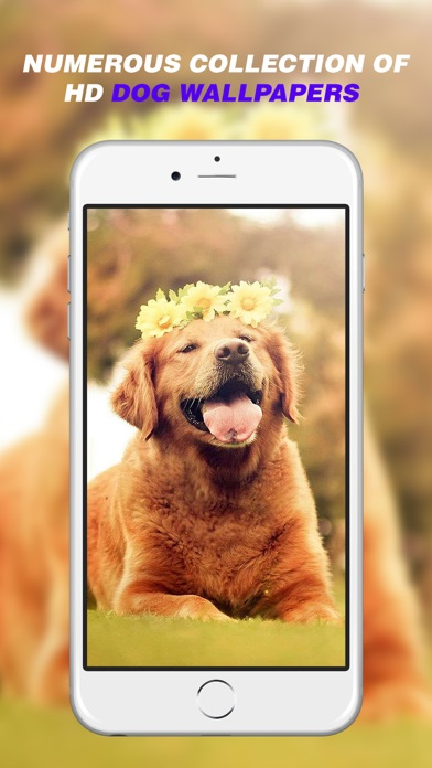 Dog Wallpapers Home Screen Themes Backgrounds App