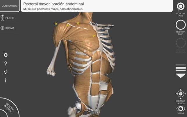 Anatomía 3D para el Artista   v. 1.2 en Mac App Store