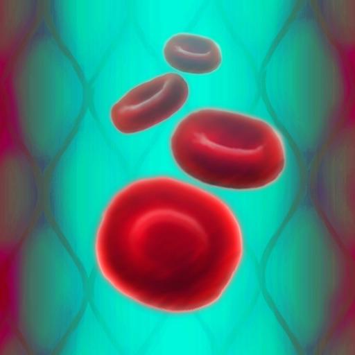 BloodPlay - An Educational Adventure