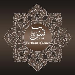 Surah Yasin Audio Urdu - English Translation