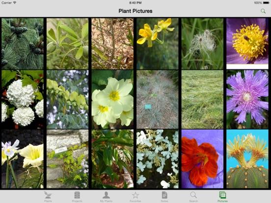 Landscaper's Companion for iPad screenshot two