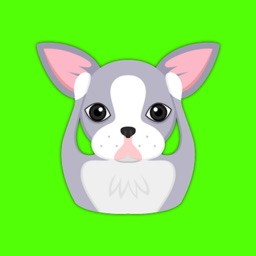 Blue Boston Terrier Emoji Stickers for iMessage