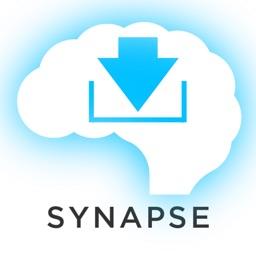 Latin Synapse Free