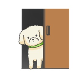 Many Stickers Of Lovely Toy Poodle Dog