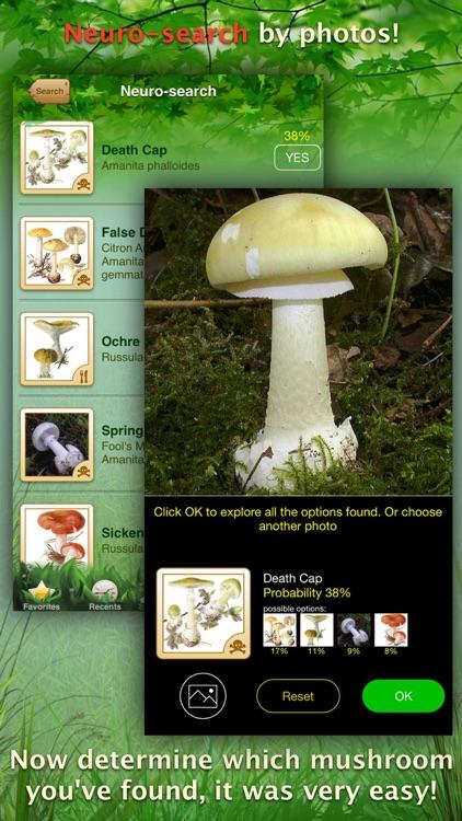 Mushrooms: Great Encyclopedia of Fungi screenshot-0