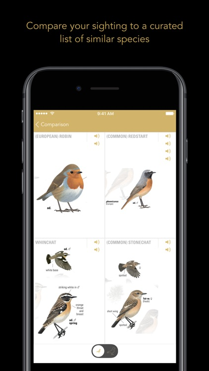 Collins British Bird Guide screenshot-4