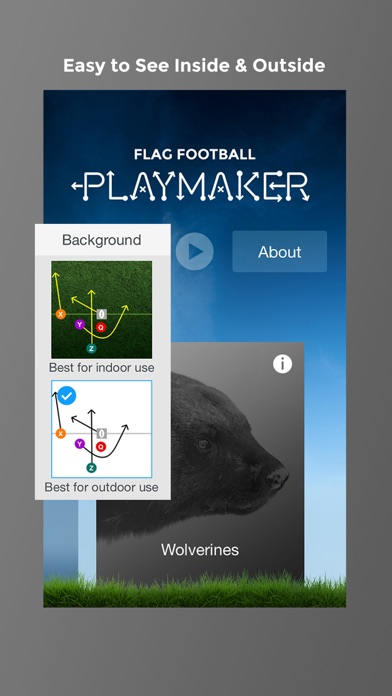 Flag Football Playmaker HD app image