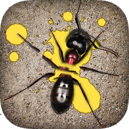 Ant Smasher Games
