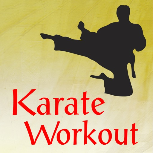Karate Workout