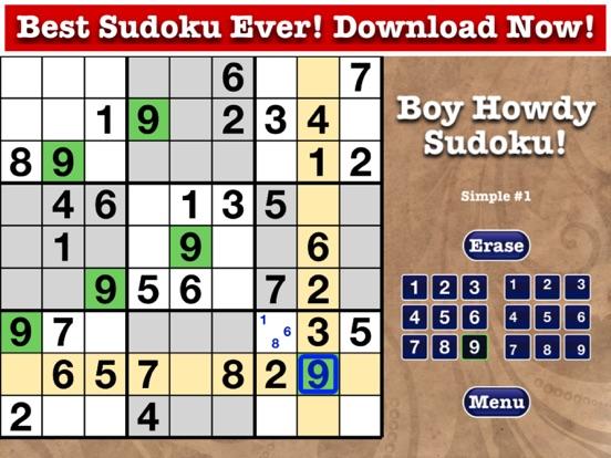 Sudoku – Boy Howdy Technology
