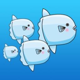 Cute Ocean Sunfish - Mola Mola Sticker