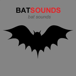 Bat Sounds & Scary Sounds