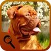 相違点の動物を見つける - iPadアプリ