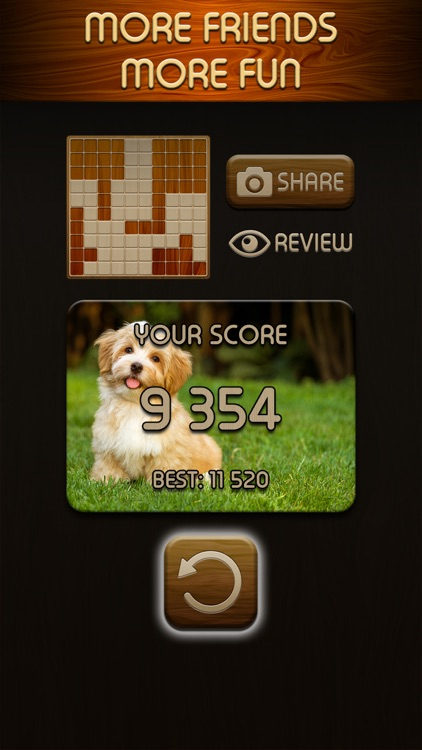 Woody Puzzle screenshot-3