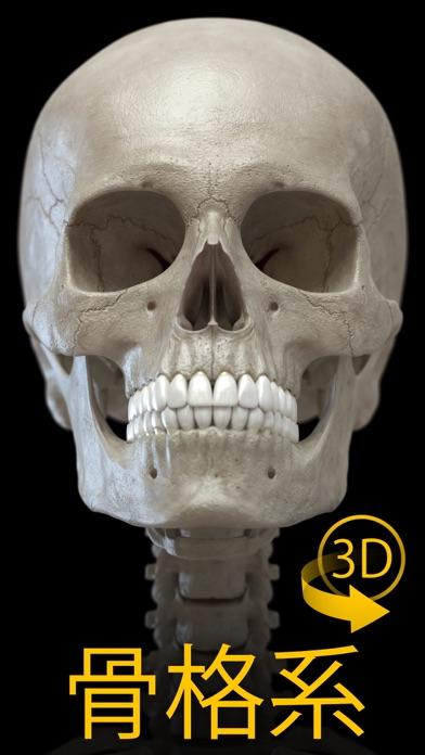 骨格 - 解剖学3D アトラススクリーンショット