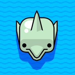 Dolphin Racing - Fish Bubble Adventure Game