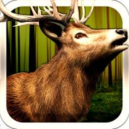 3D Deer Hunting Hunt In The Jungle