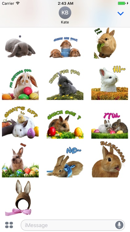 Cutest Easter Bunny Animated Stickers