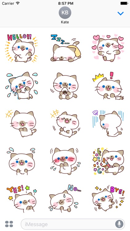 Siamese Cat 3 - Text Message Stickers Pack