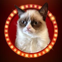 KittyGram - Cutest Cats Photo Decorator