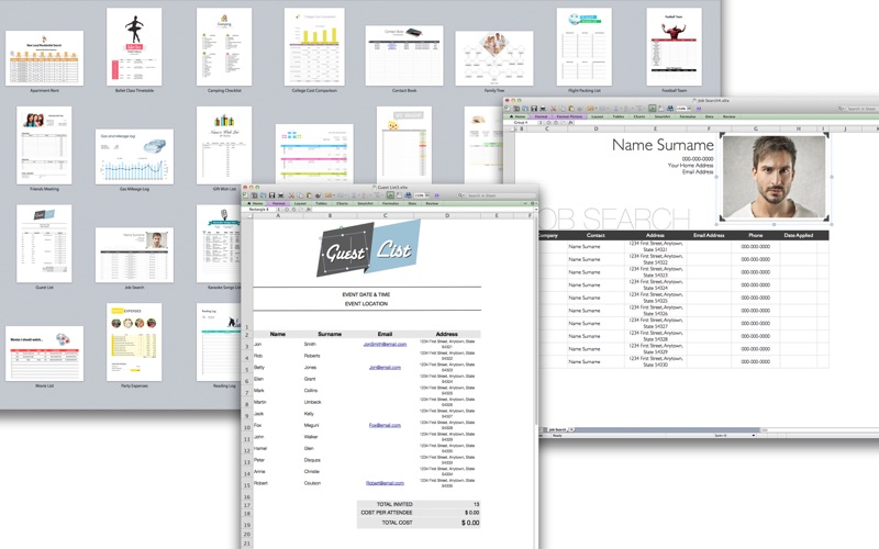Templates for MS Excel - Xpert Designs Screenshot