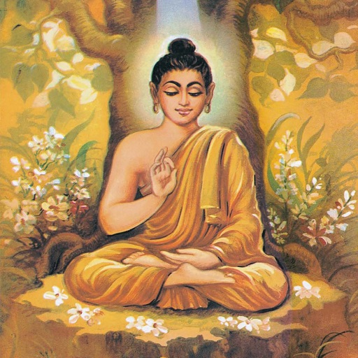 Buddha (The Enlightened One) - Amar Chitra Katha