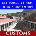NT World - Customs icon
