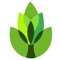 Garden Answers Plant Identification helps you identify over 20,000 plants