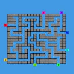 Labyrinth - Computer Intelligence Simulation
