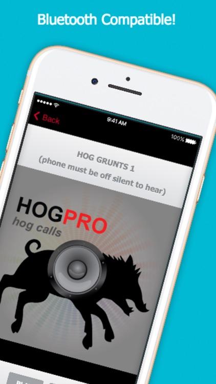 Hog Calls For Hog Hunting
