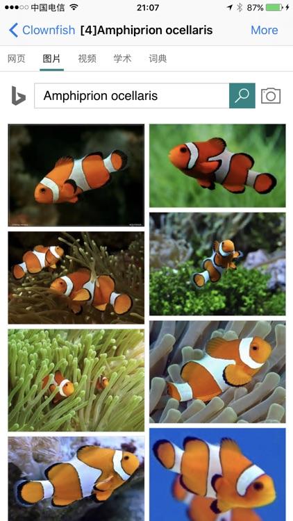 Marine Aquarium Fish screenshot-4