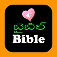 Codes for Telugu-English Indian Audio Holy Bible Hack