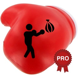 Boxing Challenge Workout PRO