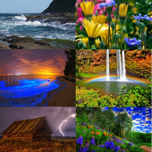 Natural Ambience Sounds for Relaxation
