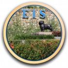 EIS Events icon