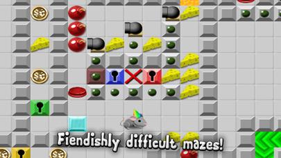 Rodent Rush - Puzzle Challenge Cheese Chips screenshot three