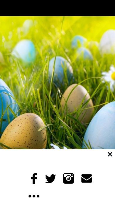 Screenshot 8 For Easter Egg Wallpapers