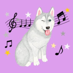 Lovely Husky Dog Stickers