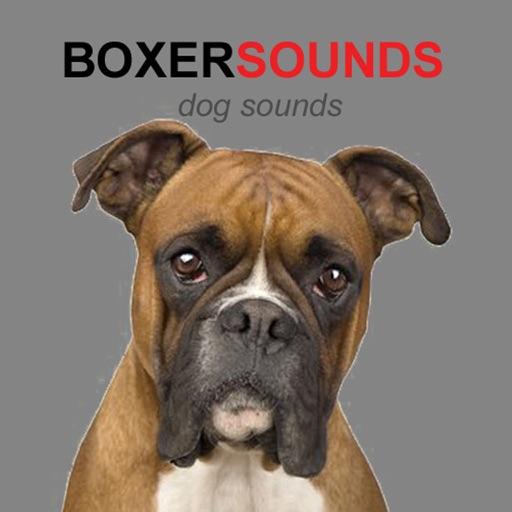 Boxer Dog Sounds & Barking