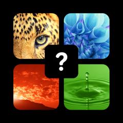 1 Image 1 Mot - Pics Quiz Trivia - Jeux Word Guess