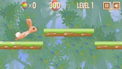 Rabbit Run Fast - Running Games