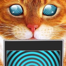 Hypnosis Trance Cat Simulator