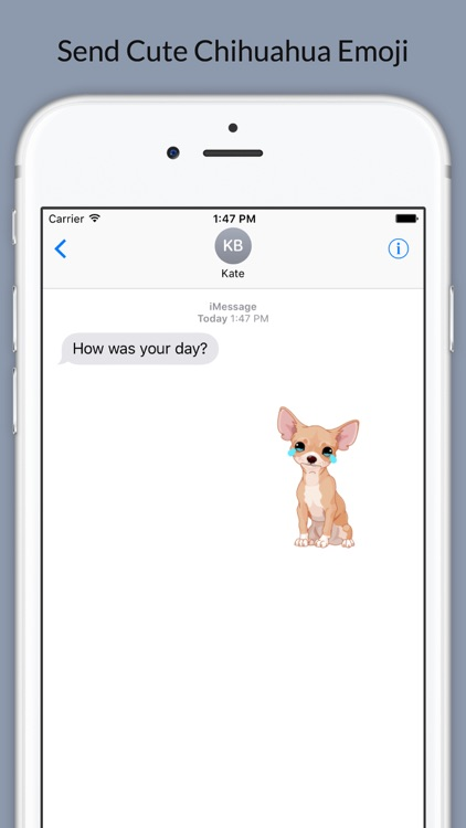 Chihuahuamoji - Chihuahua Emoji & Stickers screenshot-0