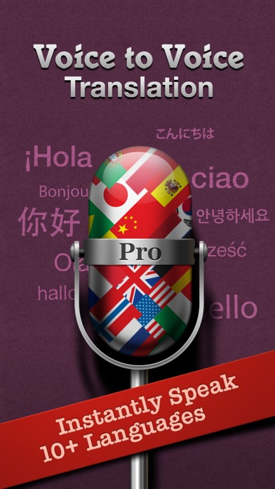 Voice Translate Pro wiki review and how to guide