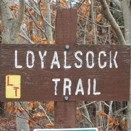 Loyalsock Trail