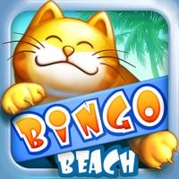 Codes for Bingo Beach Hack