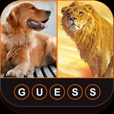 Activities of Guess The Animals: Animal Quiz