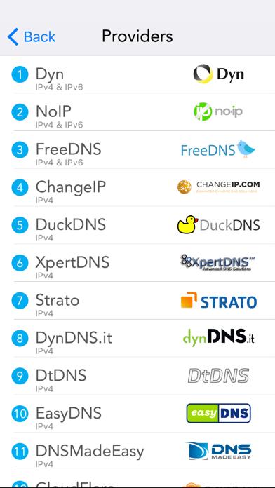 RealDNS - Dynamic DNS screenshot three