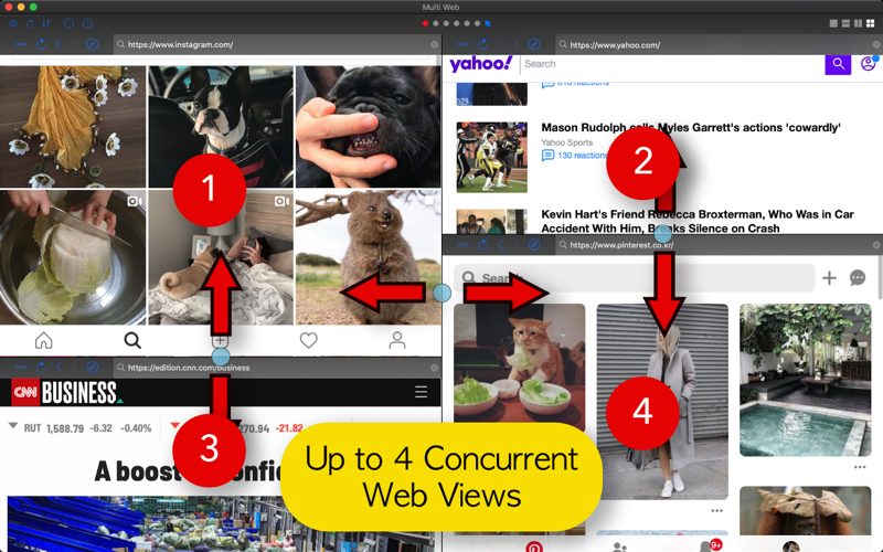 Screenshot of Multi Web View: Split Screen